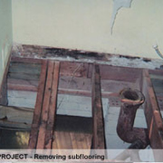 Results of rotten wood in bathroom floor tear-out...